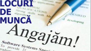 În evidențele AJOFM Covasna, la data de 12 februarie sunt 273 de locuri de muncă vacante anunțate de angajatori.