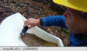 Hunedoara: Pe Valea Maliței lucrează cu șaitrocul singura căutătoare de aur independentă din România