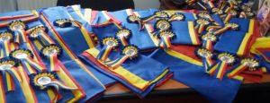 Să petrecem împreună Ziua Națională a României!