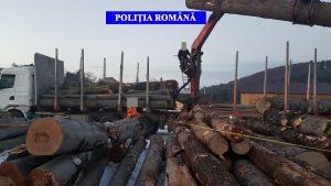Peste 20 metri cubi de material lemnos transportat fără respectarea prevederilor legale, au fost confiscați