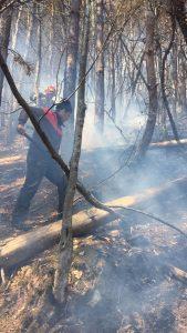 Incendiile necontrolate le dau de furcă pompierilor covăsneni