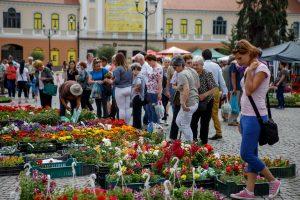 Expoziţie de flori, arbori, arbuşti ornamentali și Târgul producătorilor și meșteșugarilor organizate la Sfântu Gheorghe,la sfârșit de săptămână