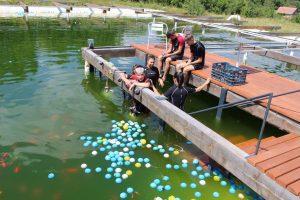 """Prețuiesc """"Natura și aventura"""": elevi din Vâlcele, implicați într-un proiect privind protecția mediului și a vieții subacvatice"""