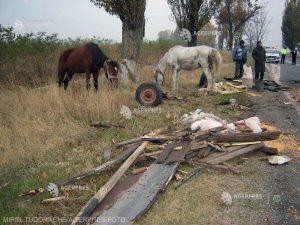 """Peste 200 de covăsneni au făcut """"Mișcare pentru un mediu curat""""  Perimetrele forestiere au rămas """"mai sărace"""" cu peste 3 tone de deșeuri"""