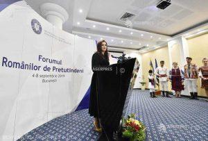 Învăţământul în limba română, fenomenul traficului de persoane şi cel al abuzului în muncă - subiecte discutate la Forumul Românilor de Pretutindeni
