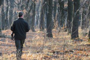 Silviu Geană (Sindicatul Silva): Pădurarii au doar arme cu bile de cauciuc, de care bandele de hoţi de lemne nu se sperie