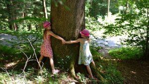 """Acţiune de protest """"Îmbrăţişează un copac"""