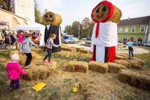 Festivalul de toamnă din Ținutul Pădurilor, sărbătoarea regiunii
