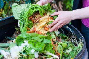 Mai multe blocuri din Sfântu Gheorghe incluse în programul de colectare a deşeurilor biodegradabile