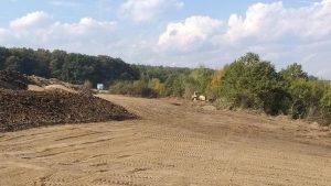 2.000.000.000 de puieți forestieri plantați de Regia Națională a Pădurilor – Romsilva  din 1991 până în prezent și vom continua să plantăm!