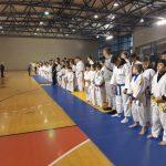 18 cupe obținute de practicanții de ju-jitsu ai CSM Sf. Gheorghe