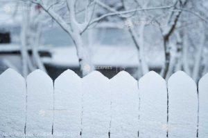 Ianuarie, o lună geroasă, dar în care se pot înregistra şi temperaturi maxime de 18-20 de grade; regim redus de precipitaţii
