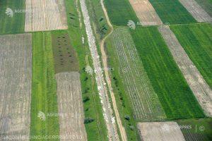 Prognoză agrometeo: Lucrările agricole se vor derula în condiţii relativ bune, în zilele următoare