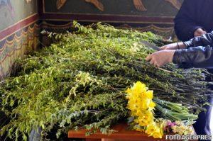 De FLORII, ramurile de salcie sfințite vor ajunge la credincioși prin intermediul voluntarilor