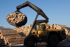 Sistemul de trasabilitate prin GPS Timflow, știi de unde vine lemnul