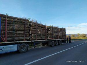 Forțele de ordine continuă acțiuniile pentru verificarea activității operatorilor economici ce desfășoară activități în domeniul silvic