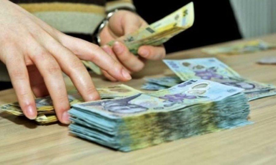 Lia Olguţa Vasilescu despre pensiile speciale: Toate partidele să cadă de acord asupra unei variante