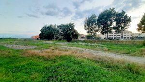 Locul  a 2317,5 tone  de deșeuri din beton și asfalt depozitate în zona digului de pe Olt, la Sfântu Gheorghe,  a fost luat de vegetație