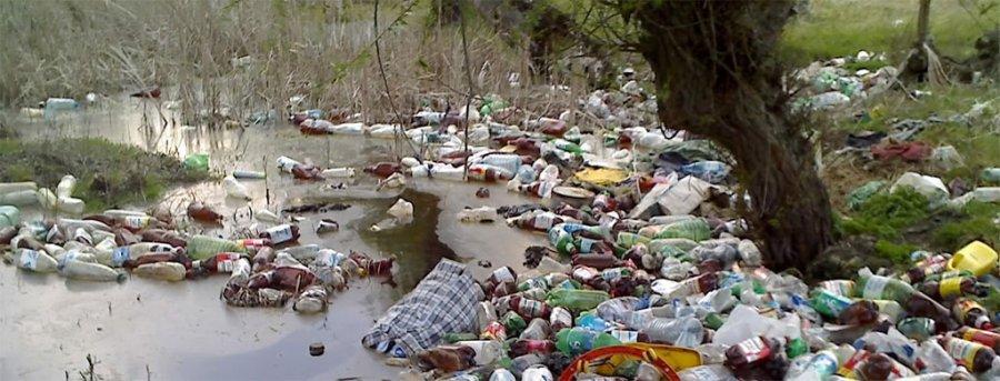 """Acțiune de ecologizare a albiei râului Oltul organizată mâine, la Sfântu Gheorghe, în cadrul programului""""Oltul cu apele curate"""""""