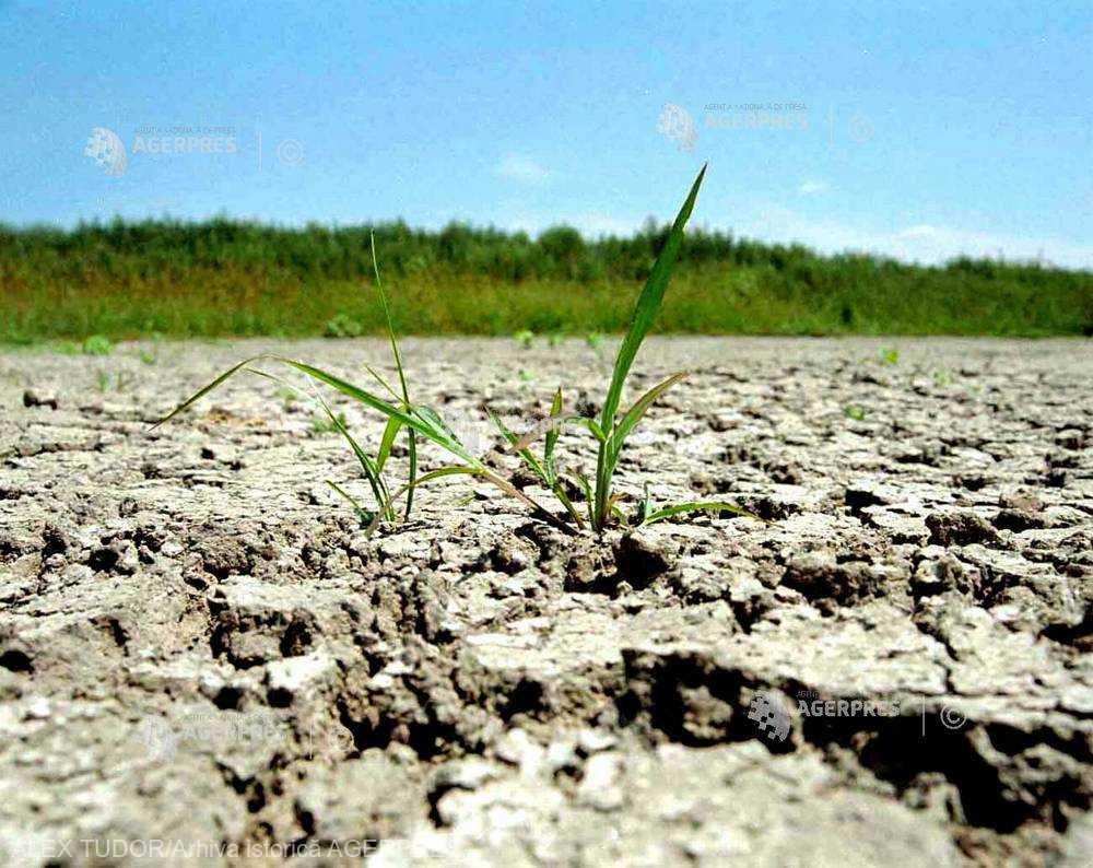 17 iunie - Ziua mondială pentru combaterea deşertificării şi a secetei (ONU)